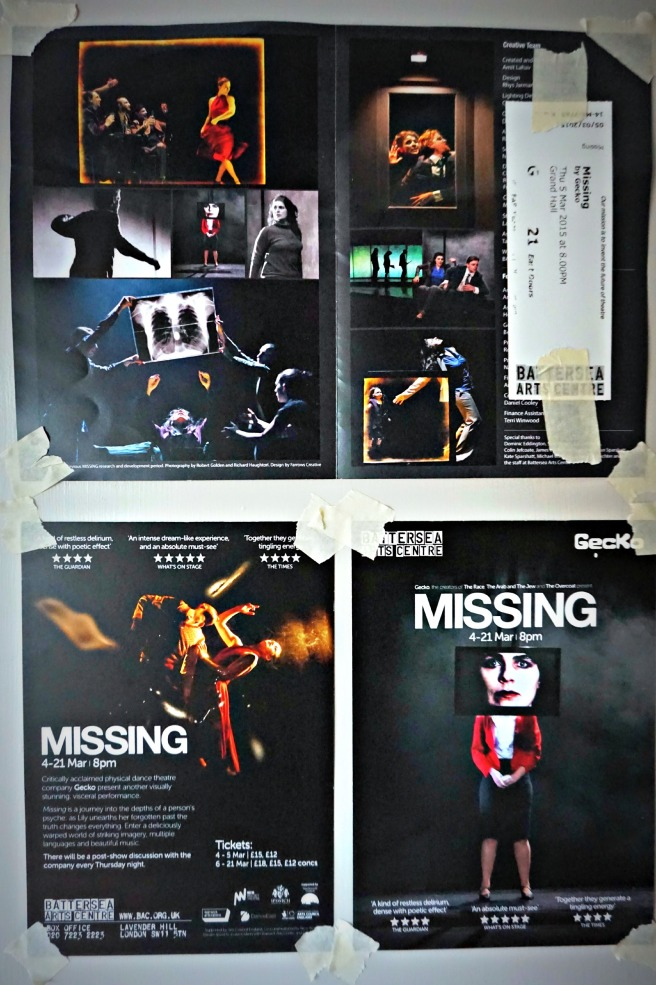 Gecko Missing Programme and Flyer